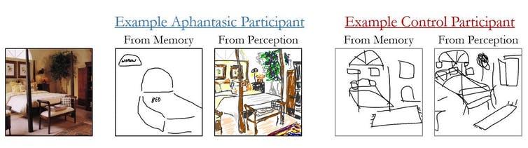 A gauche, une image que les gens ont vue, et à droite, des exemples de leurs dessins